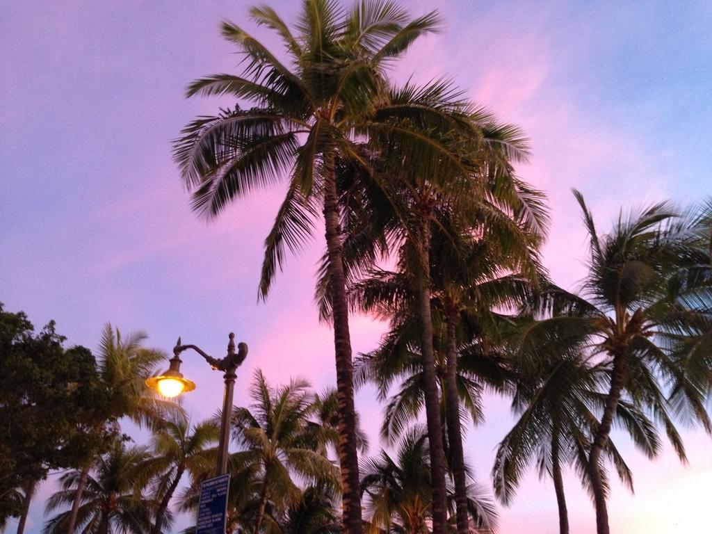 f:id:hawaii881:20180921114340j:plain