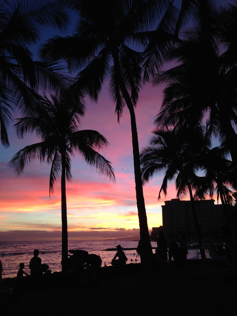 f:id:hawaii881:20180921114748j:plain