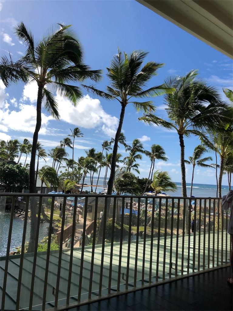 f:id:hawaii881:20181020115323j:image