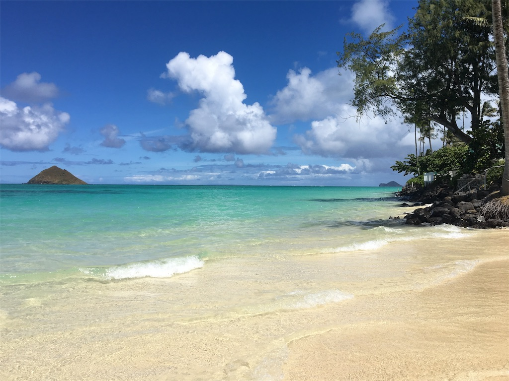 f:id:hawaii_chuzai:20170524021843j:image