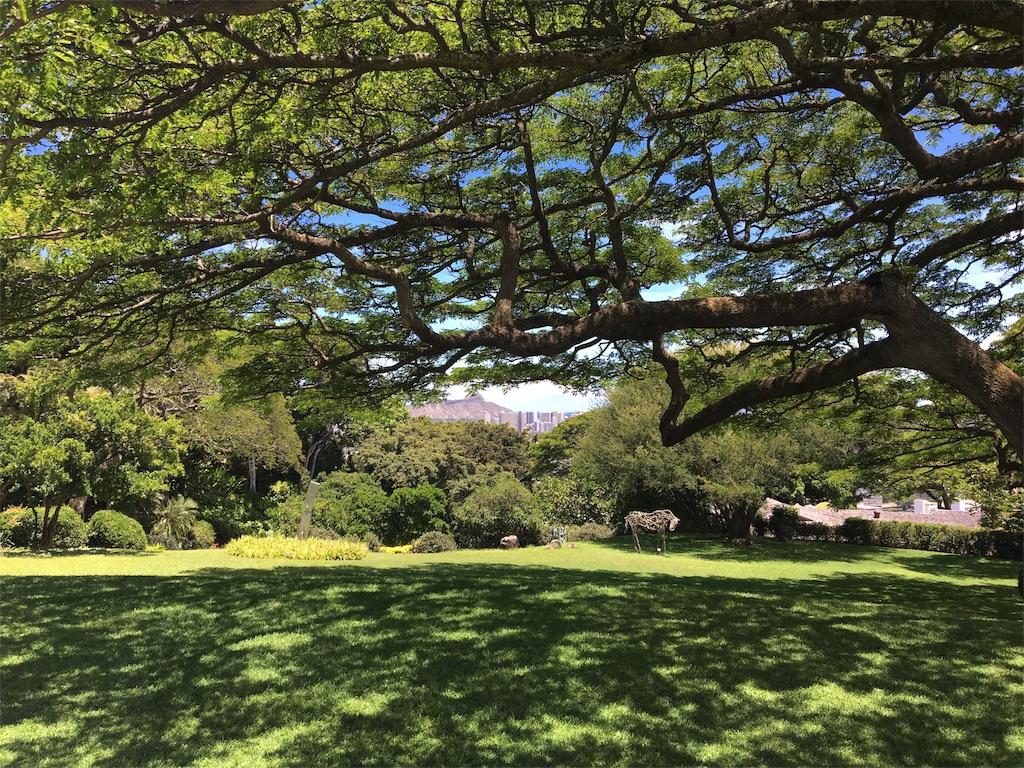 f:id:hawaii_chuzai:20170620024610j:image