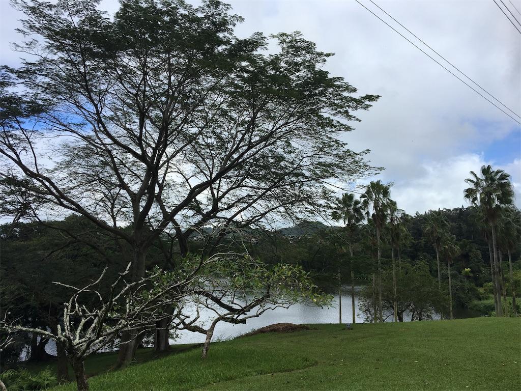 f:id:hawaii_chuzai:20171109105023j:image