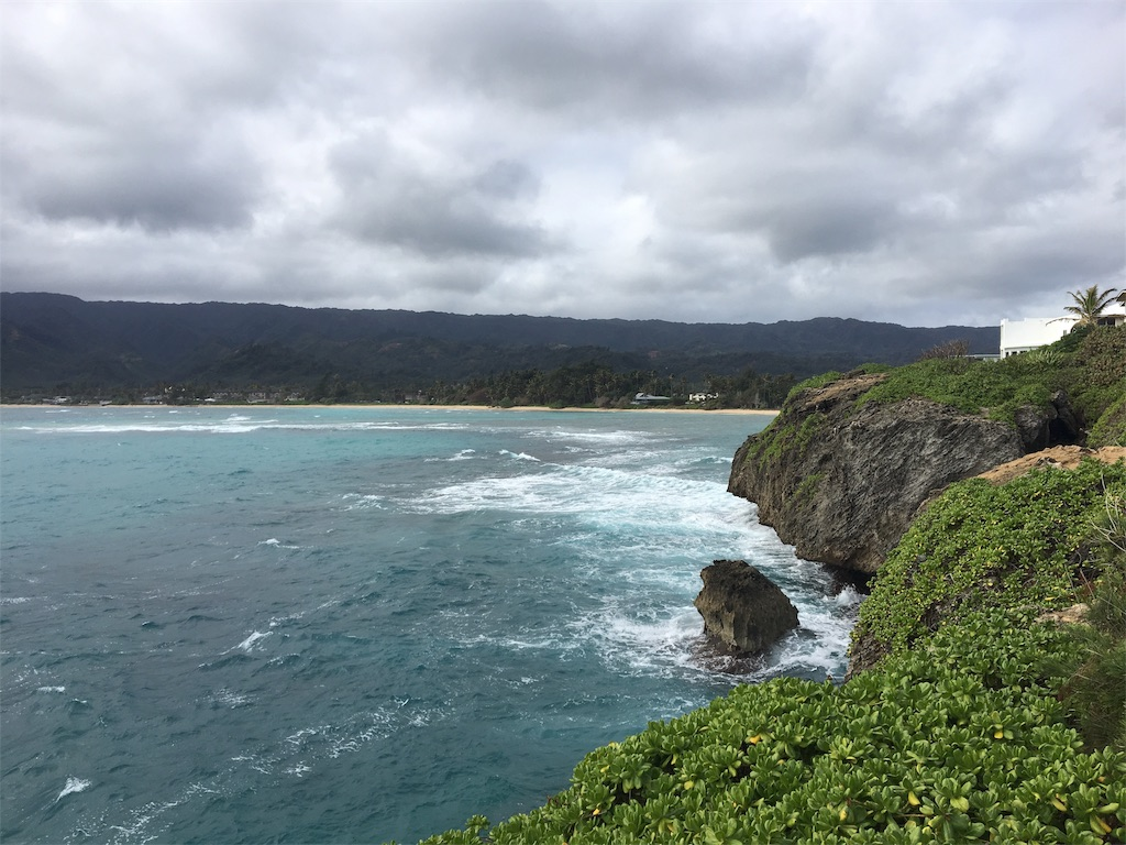 f:id:hawaii_chuzai:20180111210158j:image