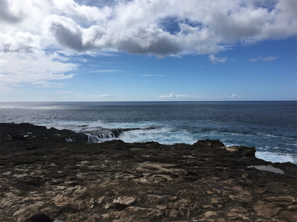 f:id:hawaii_chuzai:20180131052639j:image