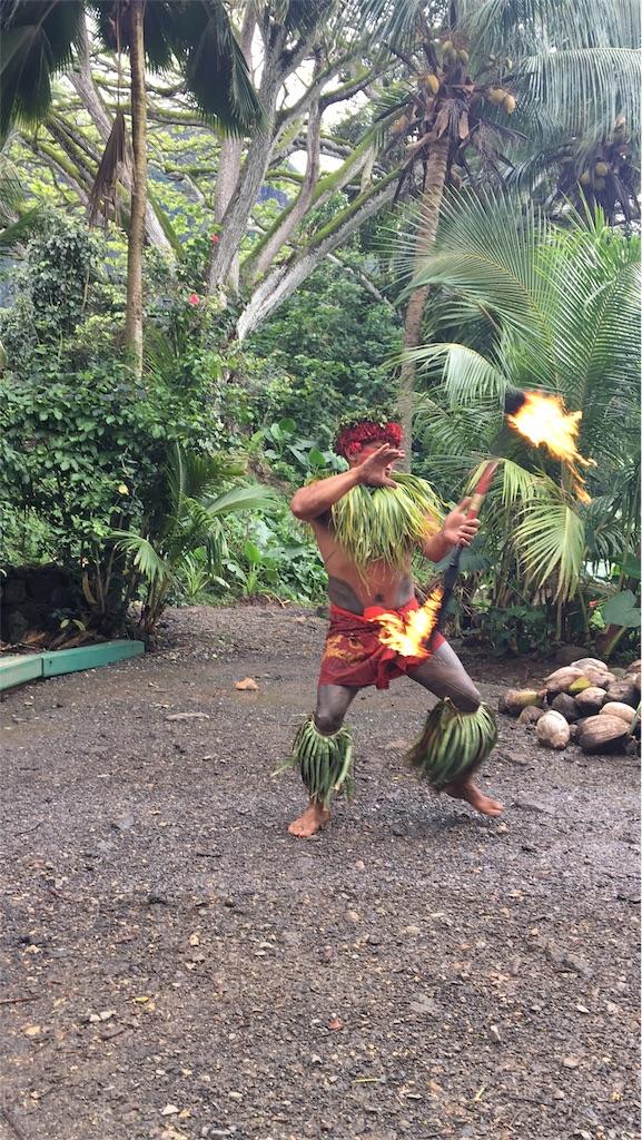 f:id:hawaii_chuzai:20180410021037j:image