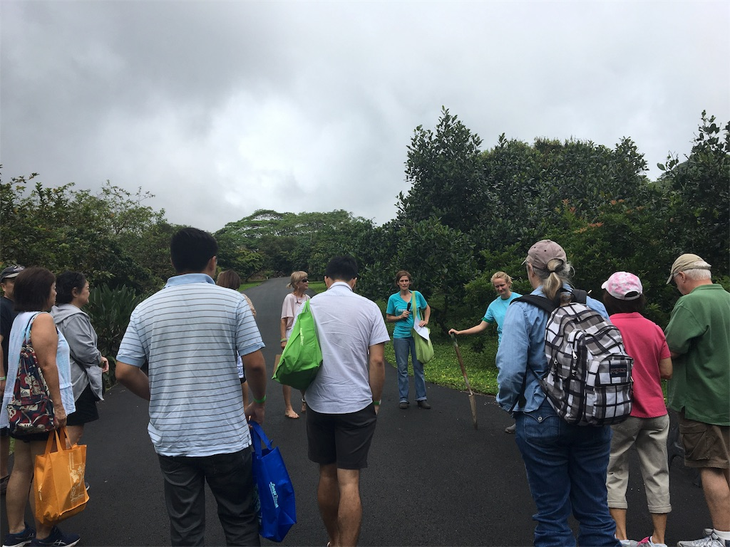 f:id:hawaii_chuzai:20180506073826j:image