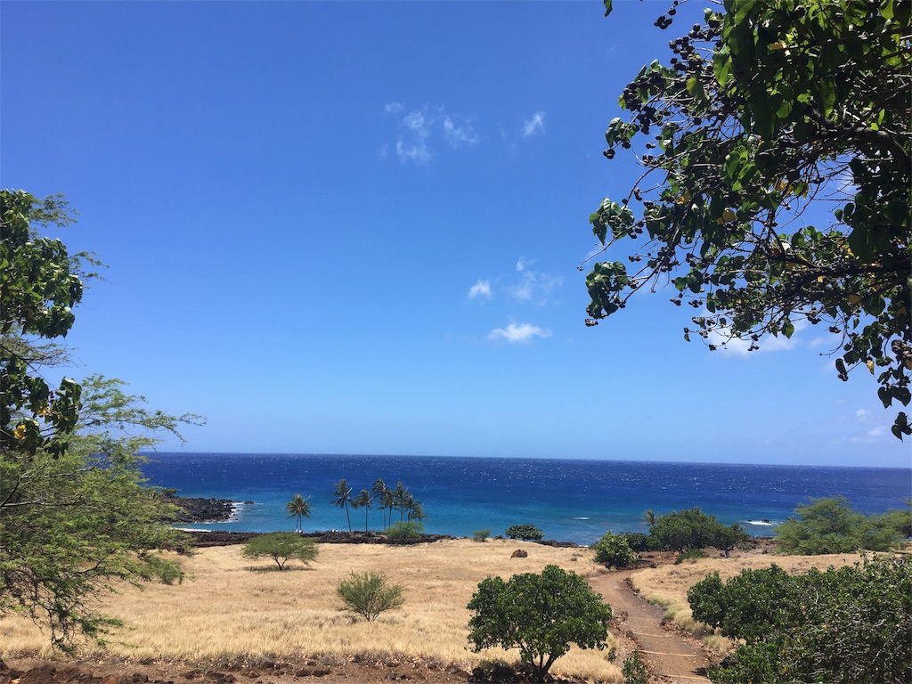 f:id:hawaii_chuzai:20180521114703j:image