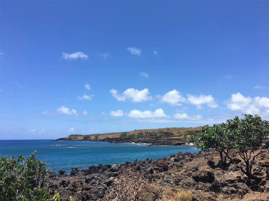 f:id:hawaii_chuzai:20180521114738j:image