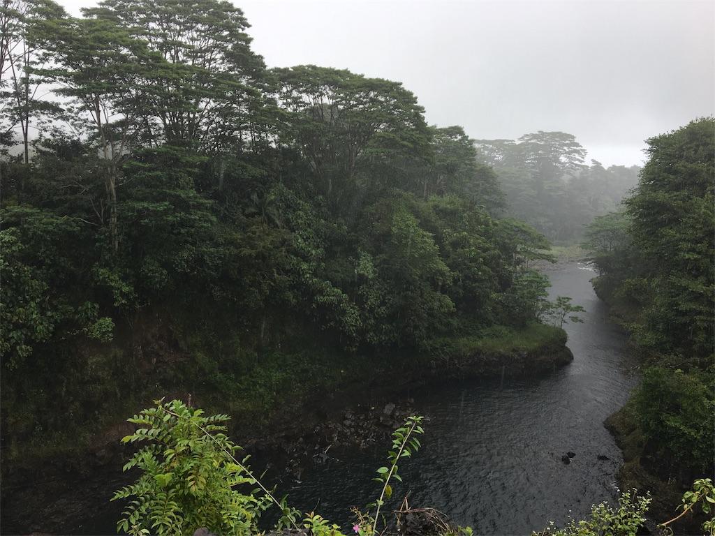 f:id:hawaii_chuzai:20180521115446j:image