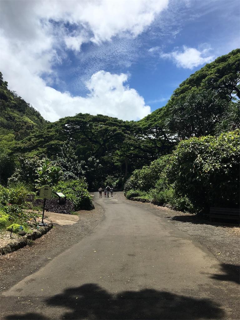 f:id:hawaii_chuzai:20180723050255j:image