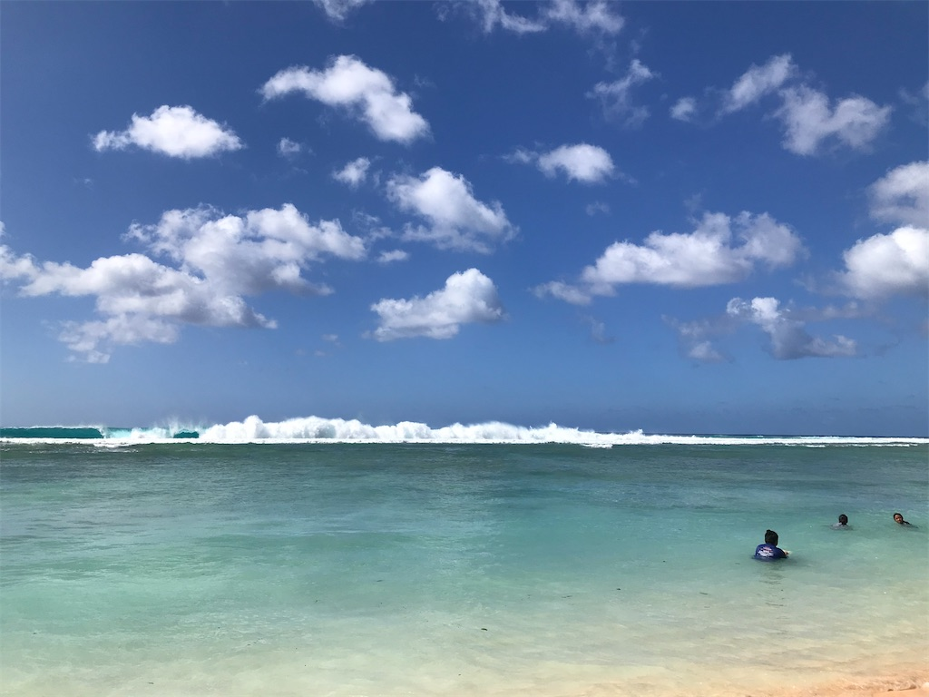 f:id:hawaii_chuzai:20210121163342j:image