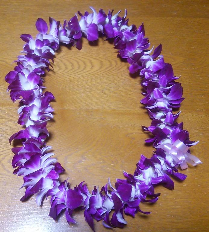 f:id:hawaiianquiltsai:20190228094539p:plain