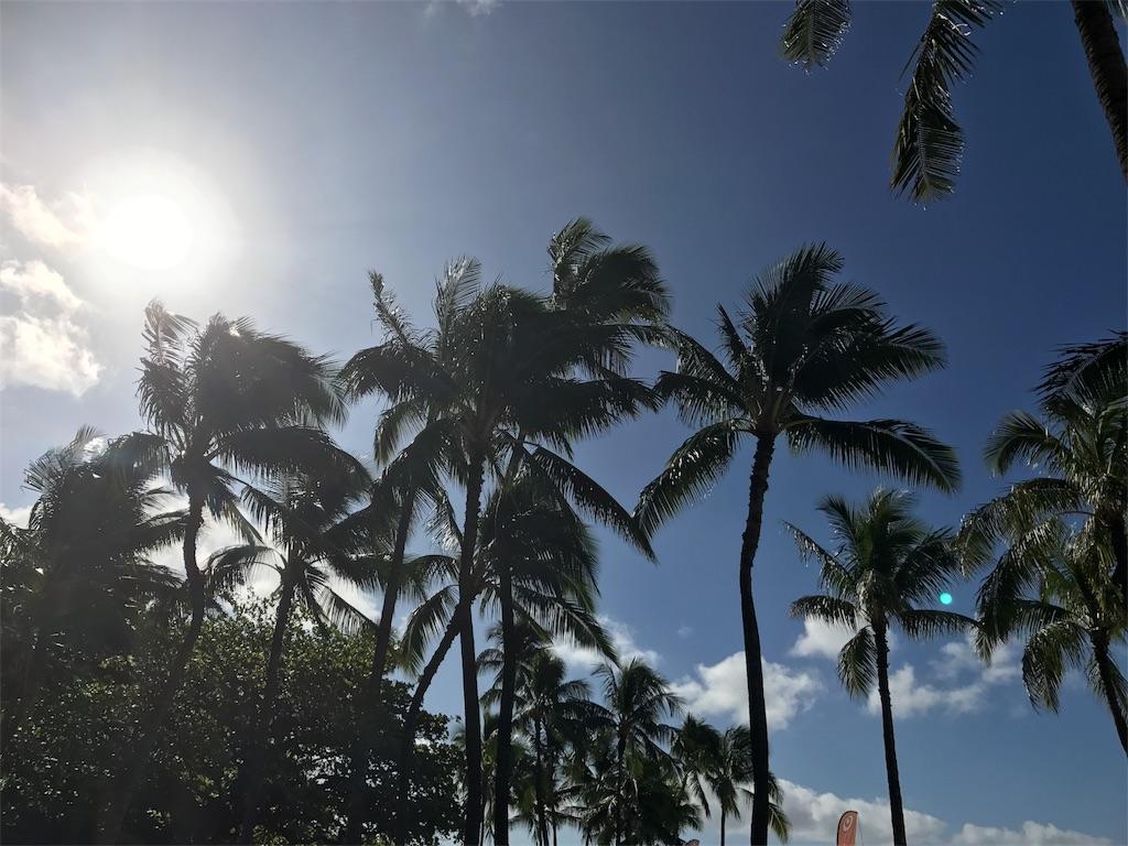 f:id:hawaiichang:20180301155513j:image