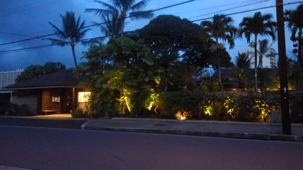 f:id:hawaiiphotogallery:20190216100330j:plain