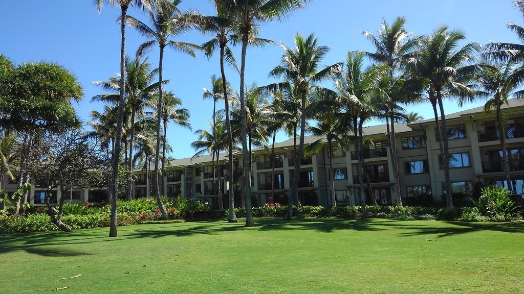 f:id:hawaiiphotogallery:20190217114500j:plain
