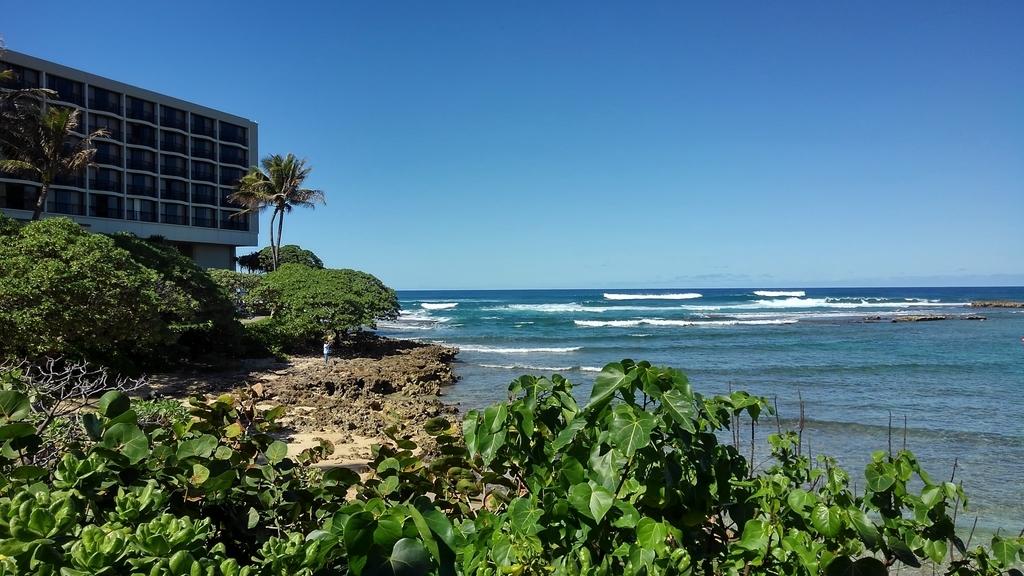 f:id:hawaiiphotogallery:20190217114834j:plain