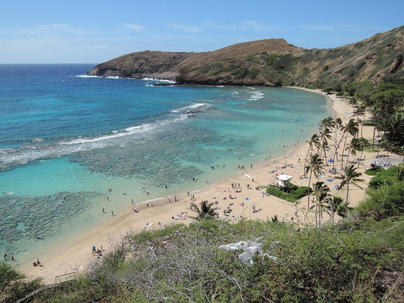 f:id:hawaiira-men:20190311203824j:plain