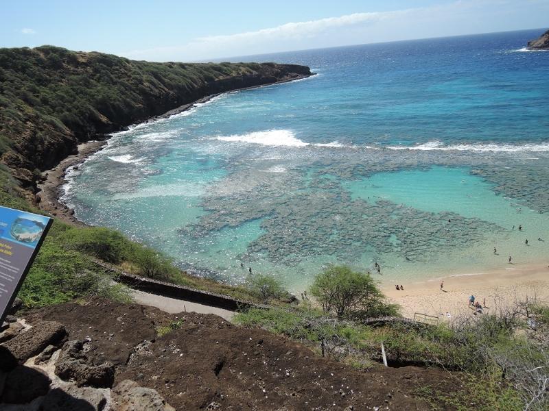 f:id:hawaiira-men:20190311203836j:plain