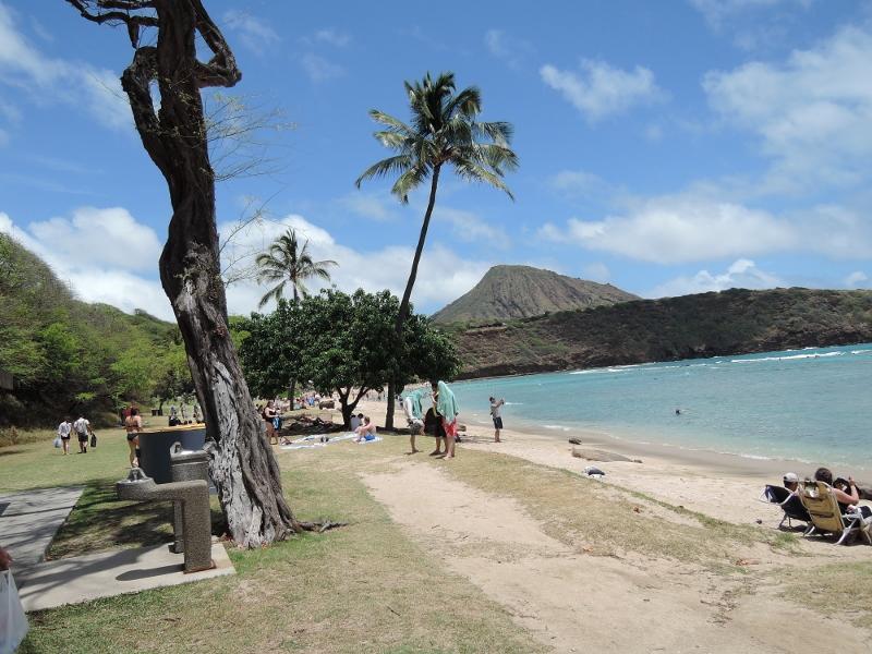 f:id:hawaiira-men:20190311204008j:plain