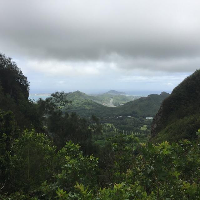 f:id:hawaiira-men:20190314104112j:plain