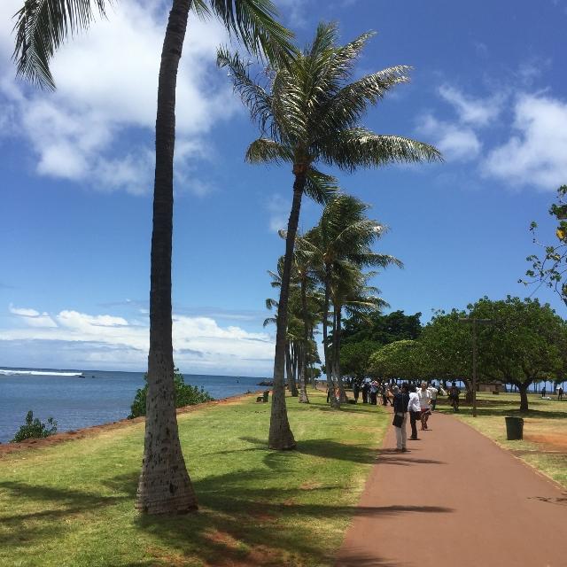 f:id:hawaiira-men:20190314104208j:plain