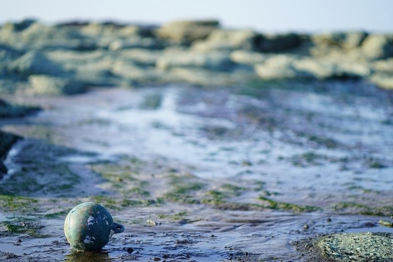 漂着物がある海