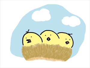 鳥の巣 ピヨピヨ