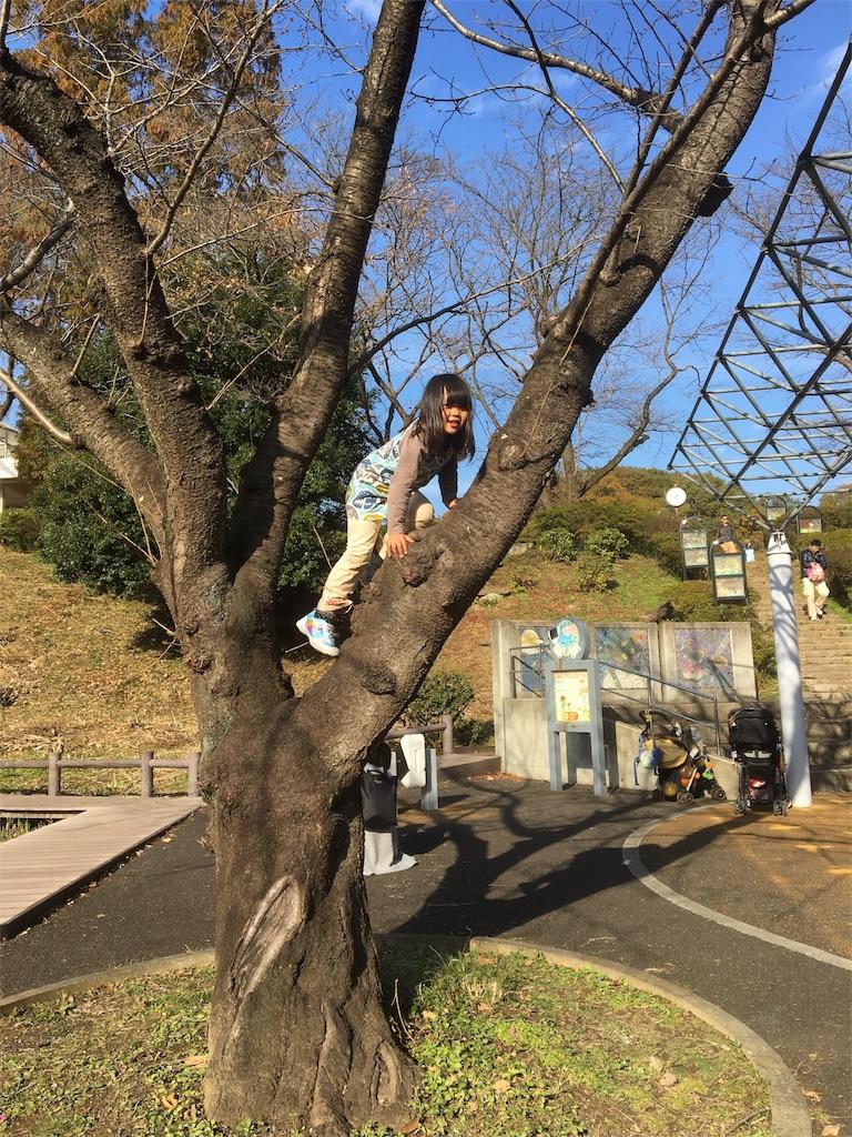 f:id:hayachi0124kurochan:20161127130703j:image