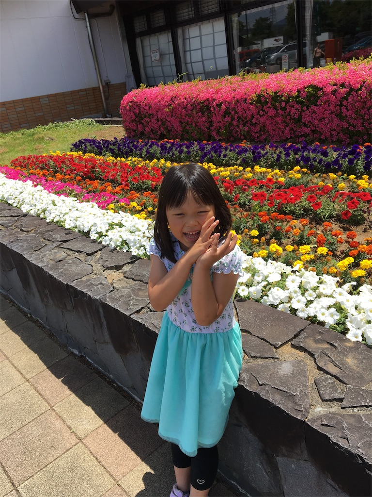 f:id:hayachi0124kurochan:20170605081237j:image