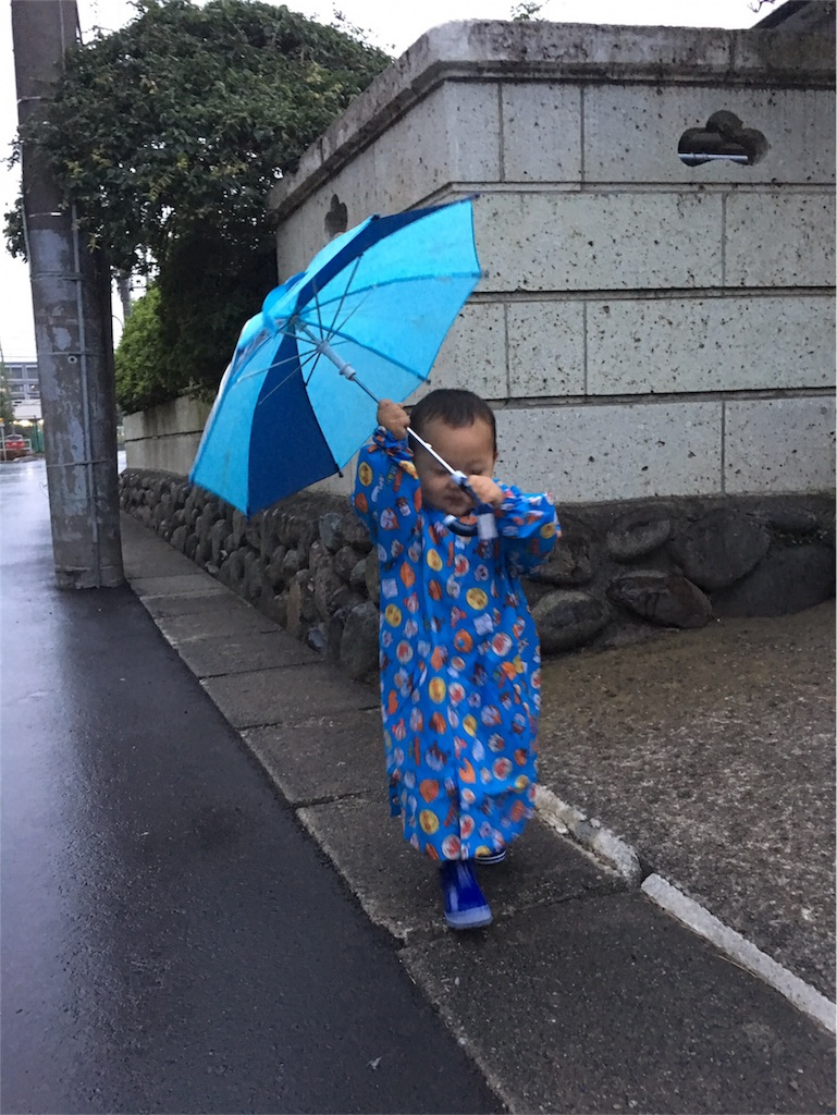 f:id:hayachi0124kurochan:20170705075019j:image