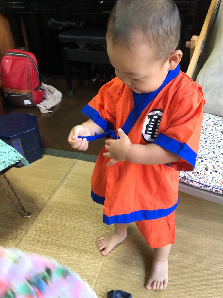 f:id:hayachi0124kurochan:20170807074016j:image