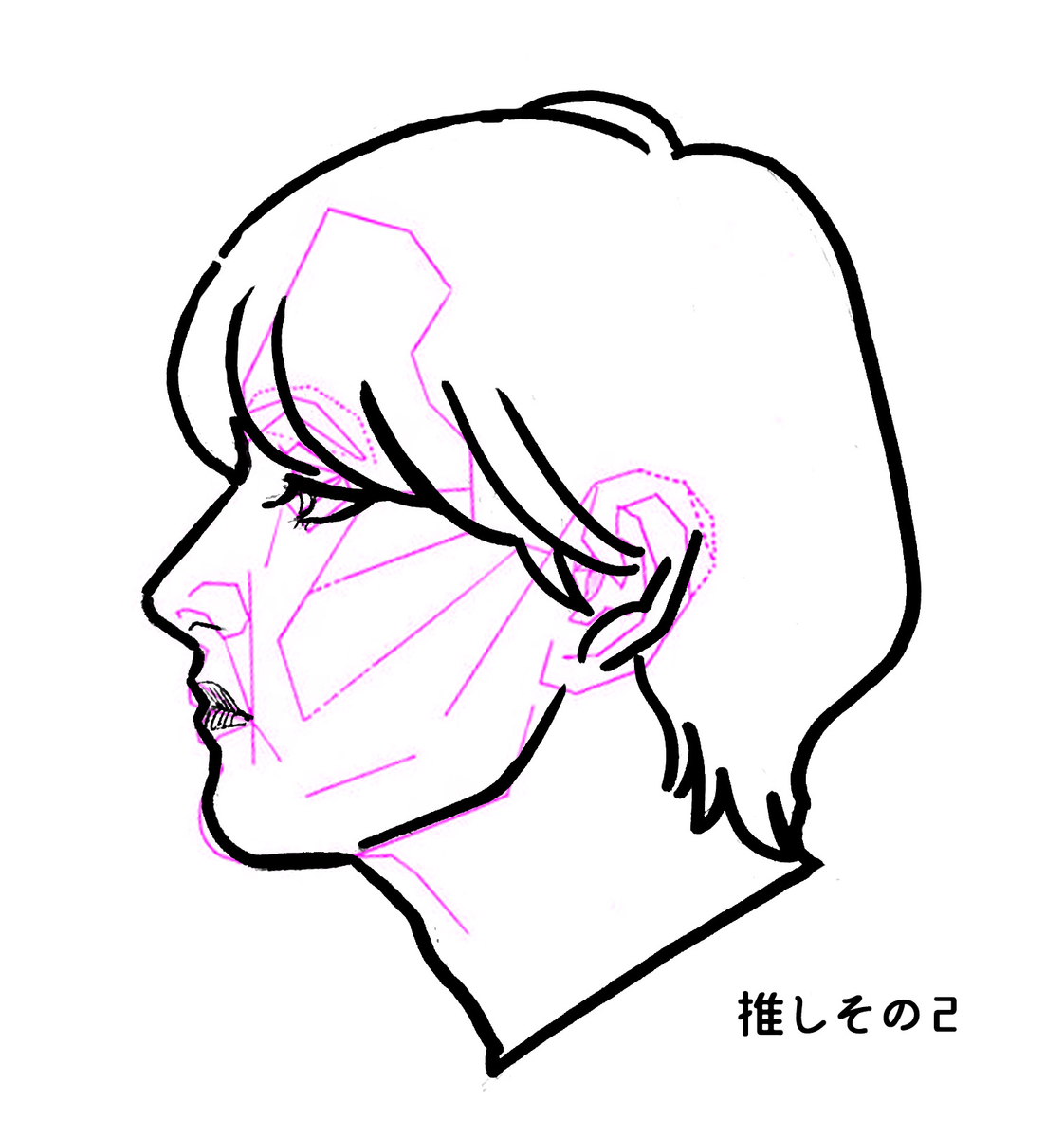 f:id:hayakawasetsuyaku:20200619193937j:plain