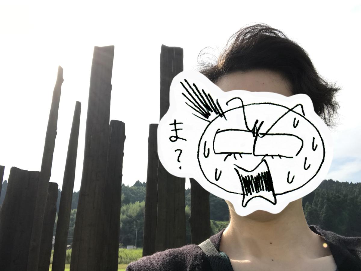 f:id:hayakawasetsuyaku:20201005211305j:plain