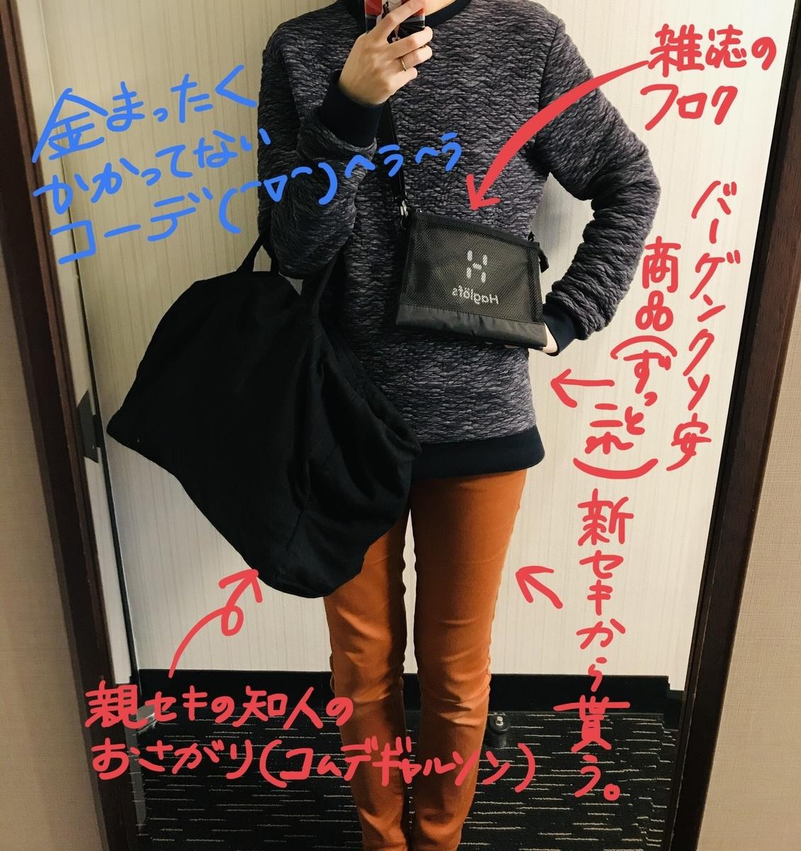 f:id:hayakawasetsuyaku:20210313192110j:plain