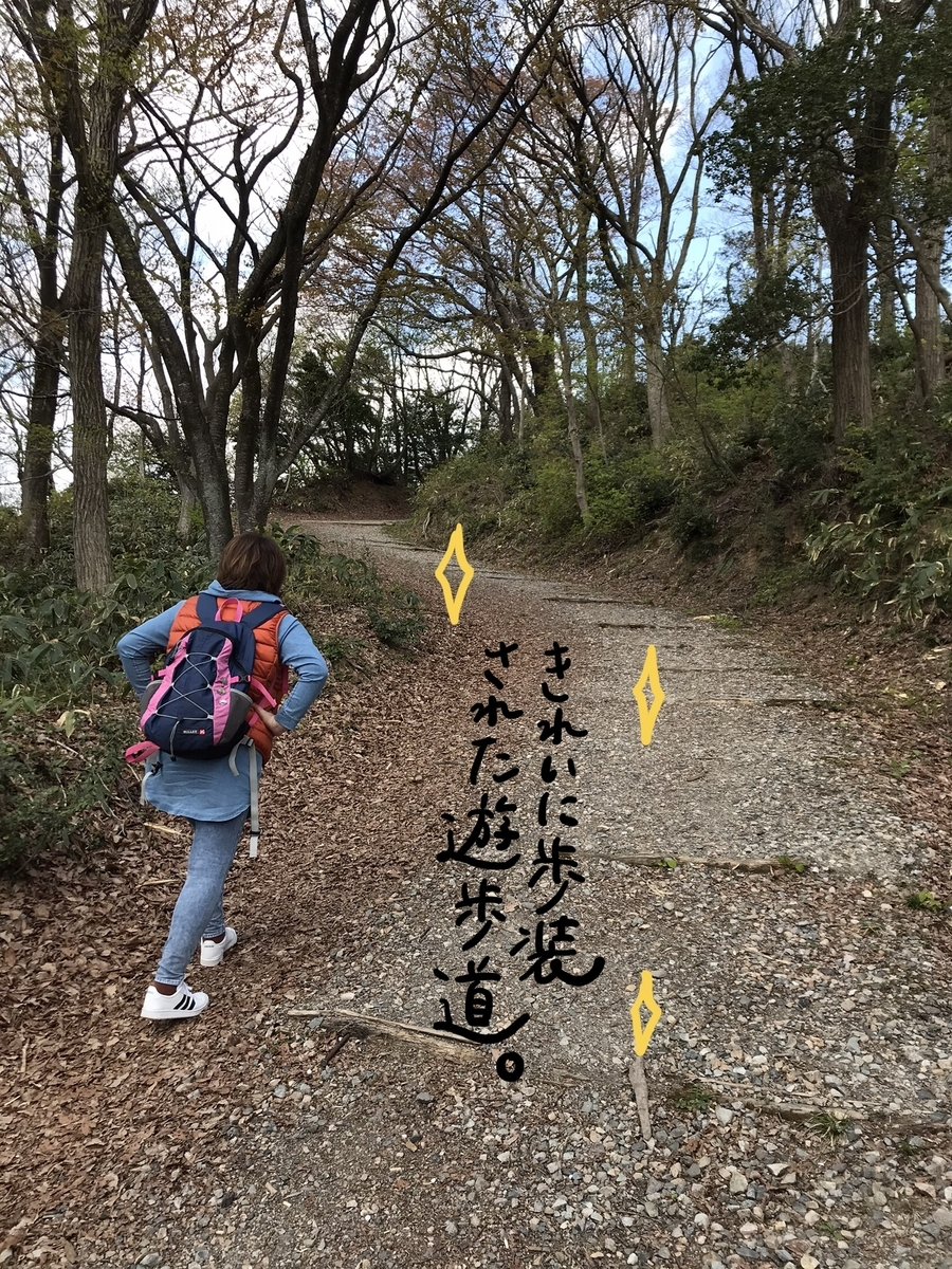 f:id:hayakawasetsuyaku:20210409193013j:plain