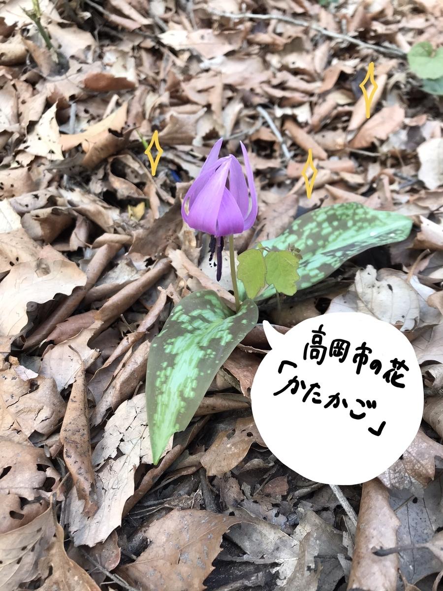 f:id:hayakawasetsuyaku:20210409194557j:plain