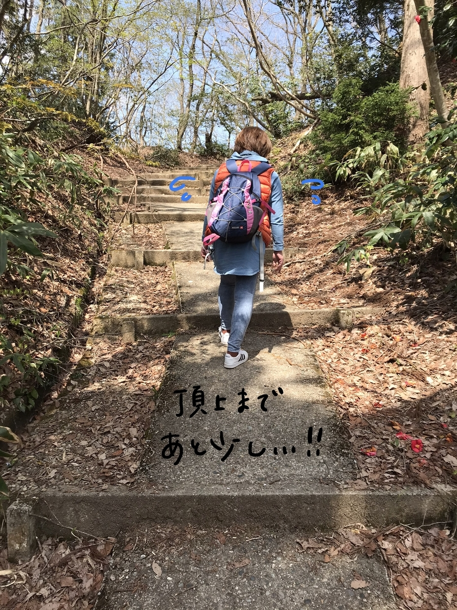 f:id:hayakawasetsuyaku:20210409195018j:plain