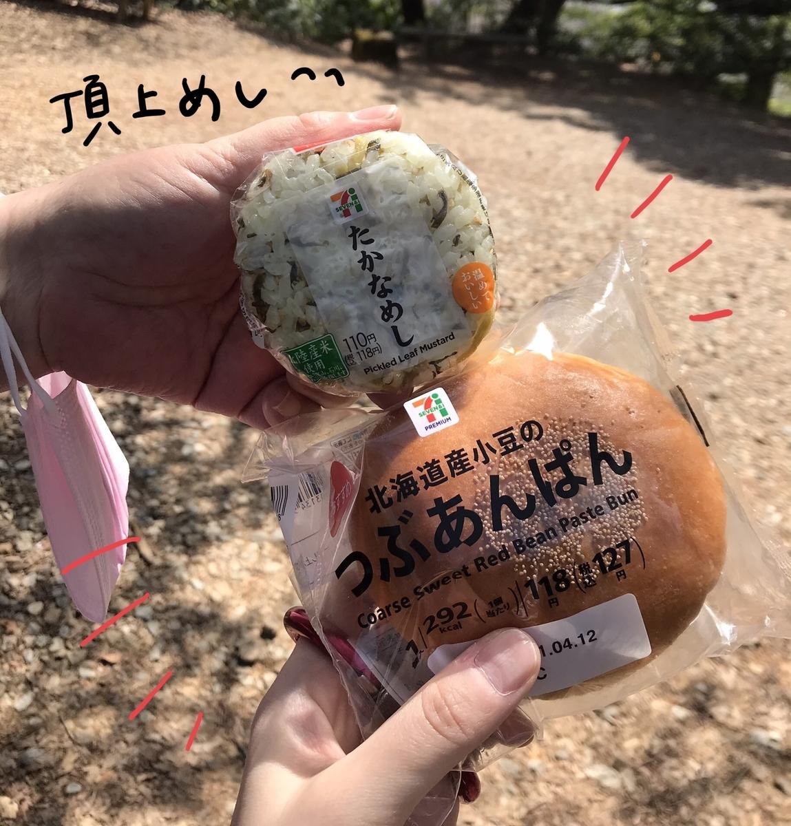 f:id:hayakawasetsuyaku:20210409195601j:plain