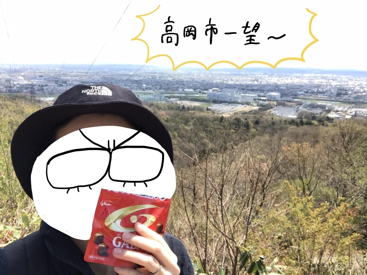 f:id:hayakawasetsuyaku:20210409200424j:plain