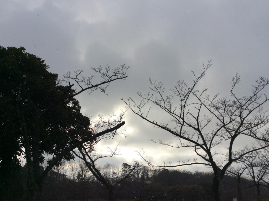 f:id:hayakira-kururu:20180217174907j:plain