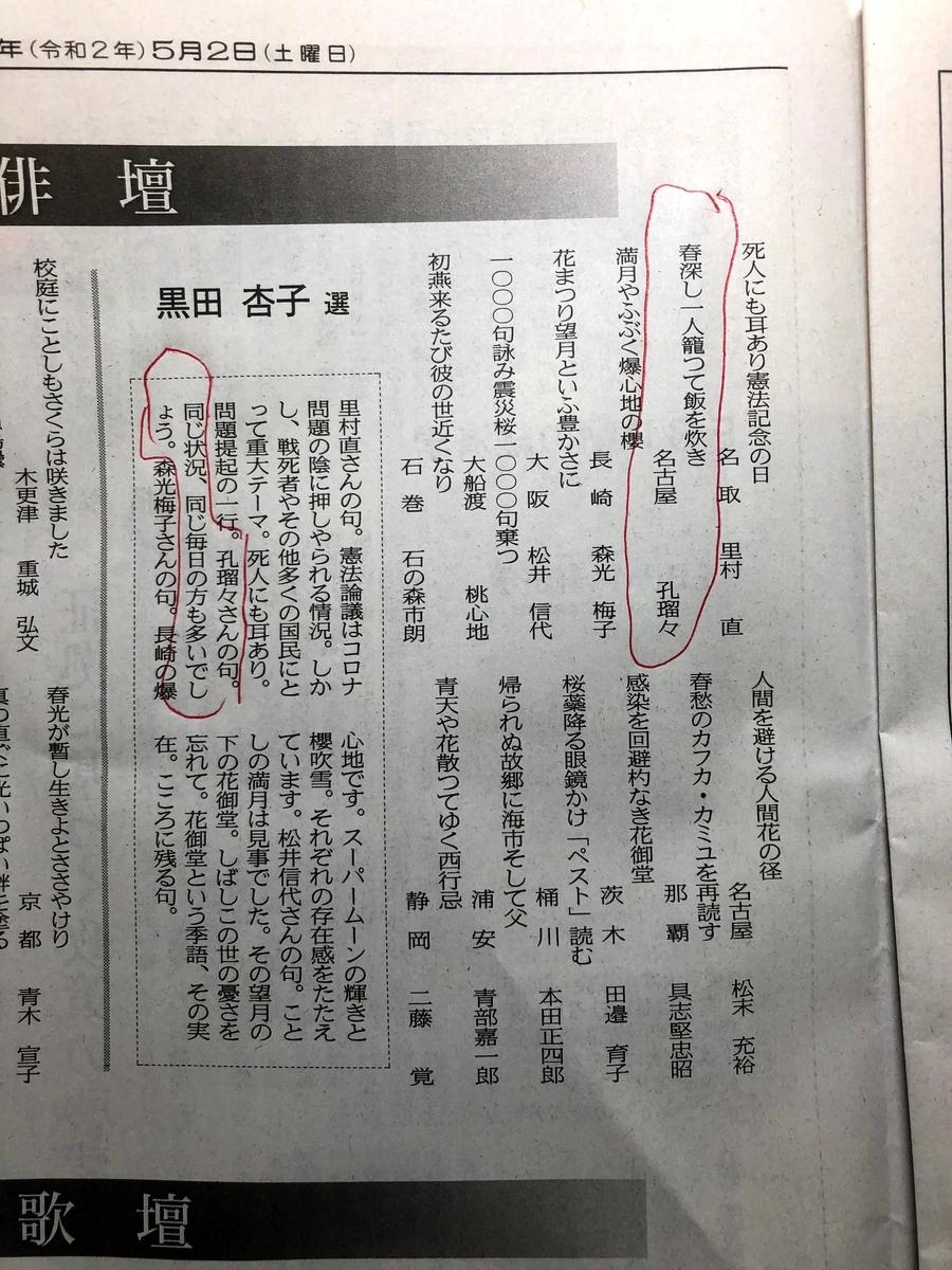 f:id:hayakira-kururu:20200502173016j:plain