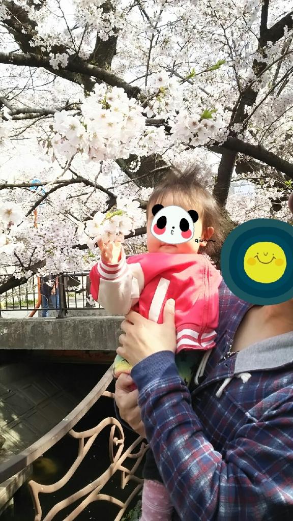 f:id:hayakuoide:20170407131125j:plain