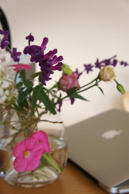 f:id:hayama-slowlife:20111117133051j:image:w250