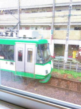タビラコ,電車