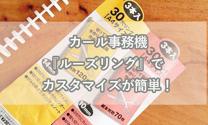 f:id:hayaokibitonamuu:20200315134658j:plain