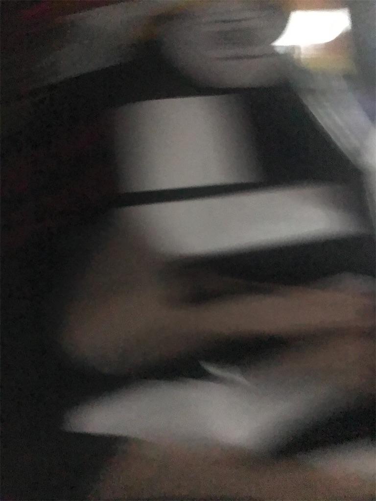 f:id:hayasiyamori:20200202005724j:image