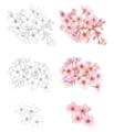 [桜][花][イラスト]][フリー素材]