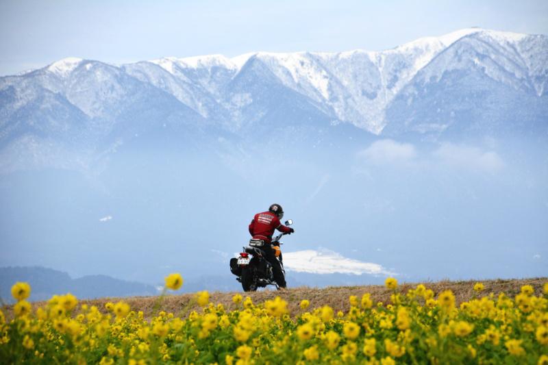 京都新聞写真コンテスト 旅人