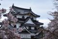 京都新聞写真コンテスト「堂々と」