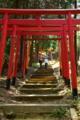 京都新聞写真コンテスト「二人で来た道」